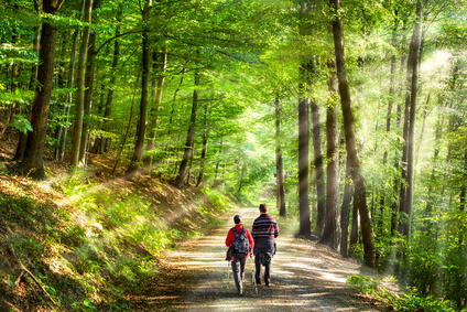 Campingplatz-Möhnesee-Spaziergang